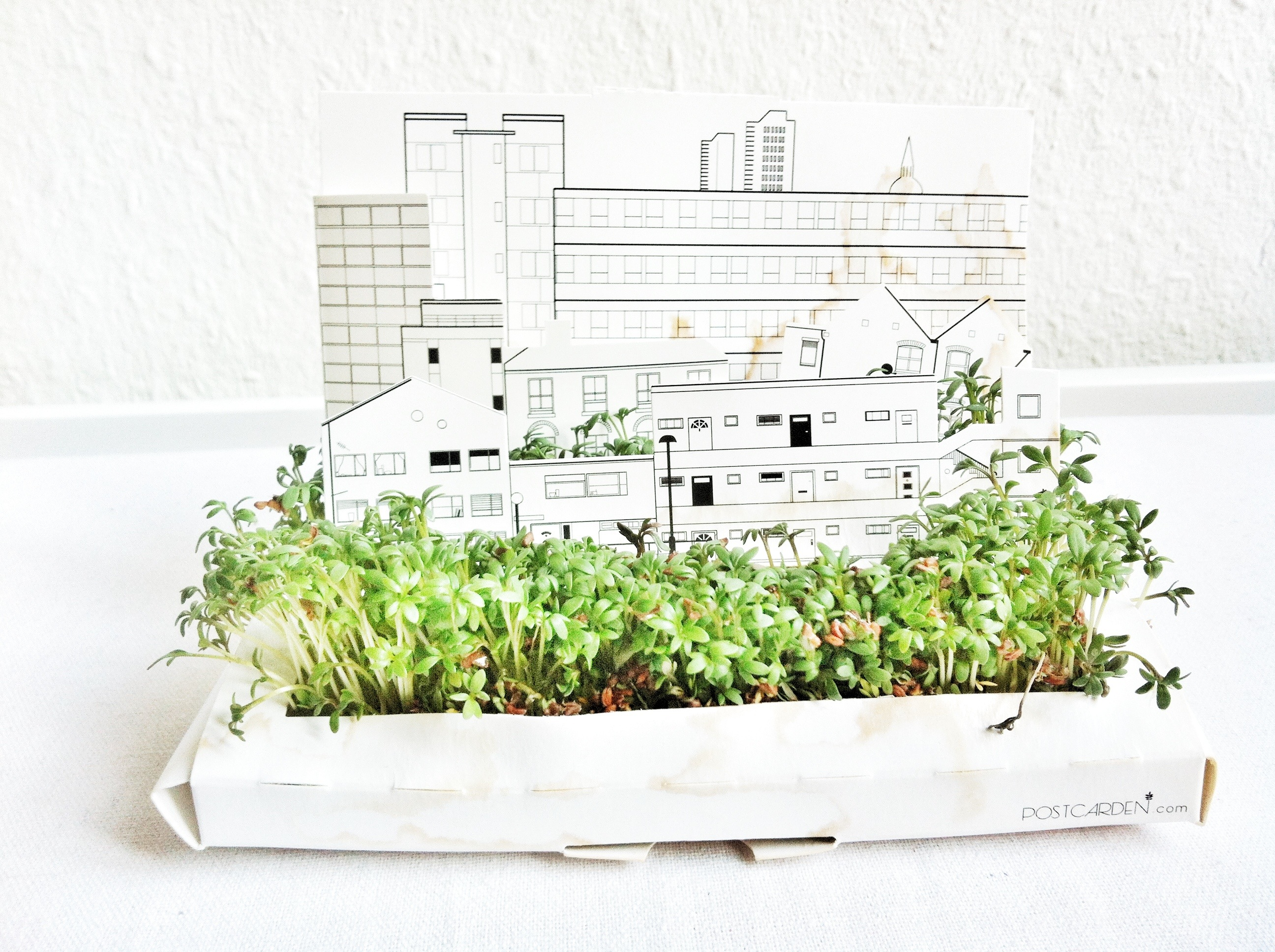 Projekt Stadtgarten.
