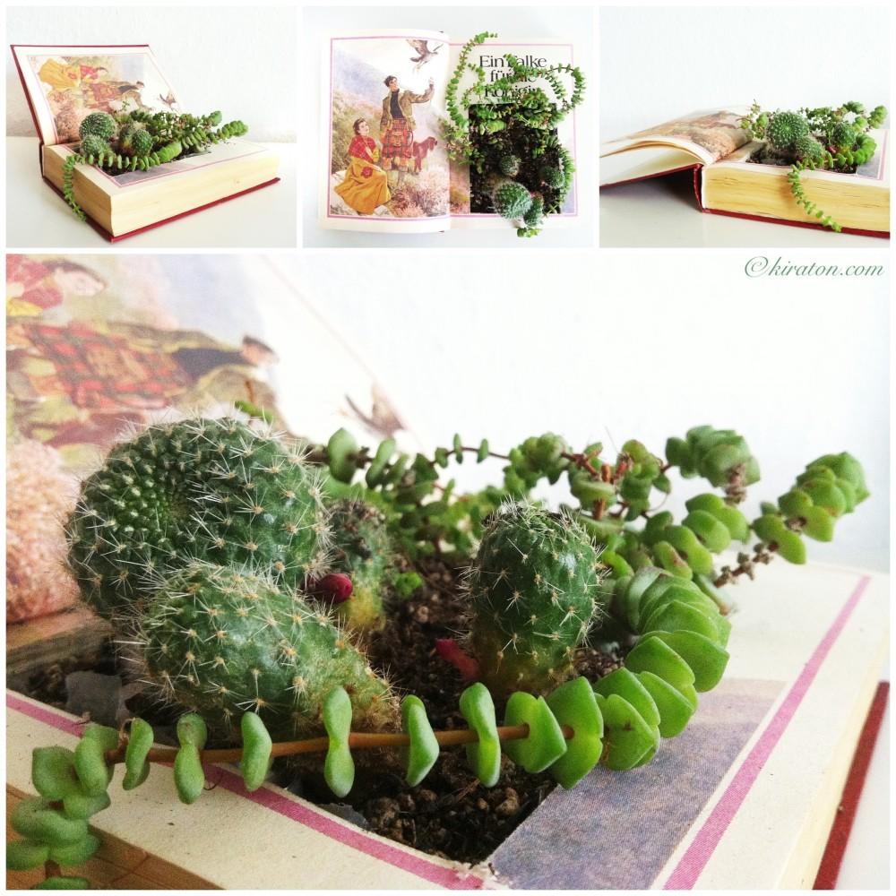 Schönes aus Büchern: Bepflanzte Bücher