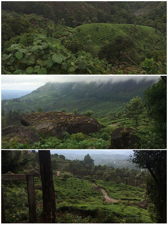 Ein wolkenverhangener Tag in Munnar.