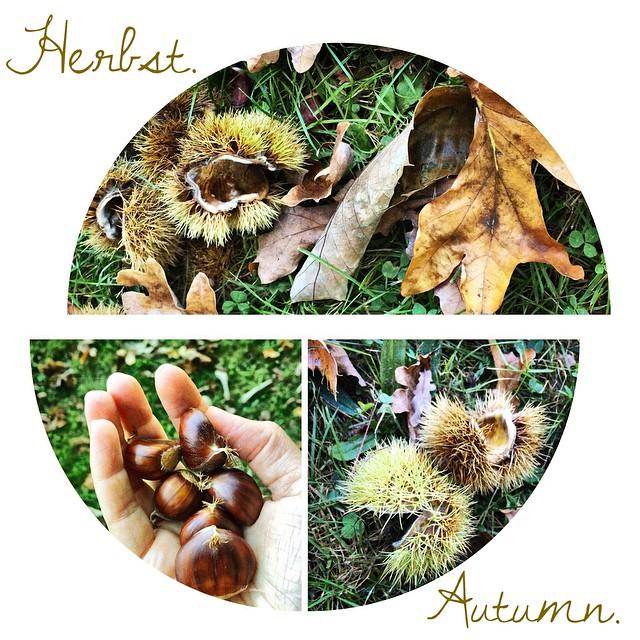 Herbst. | Autumn.