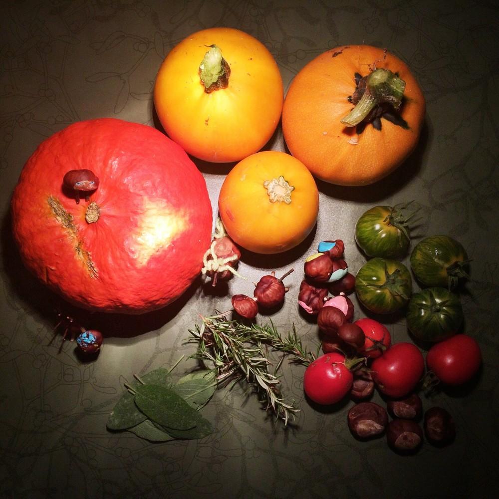Die Zutaten aus dem Garten: Hokkaido, gelbe Zucchini, grüne und rote Tomaten, Salbei, Rosmarin