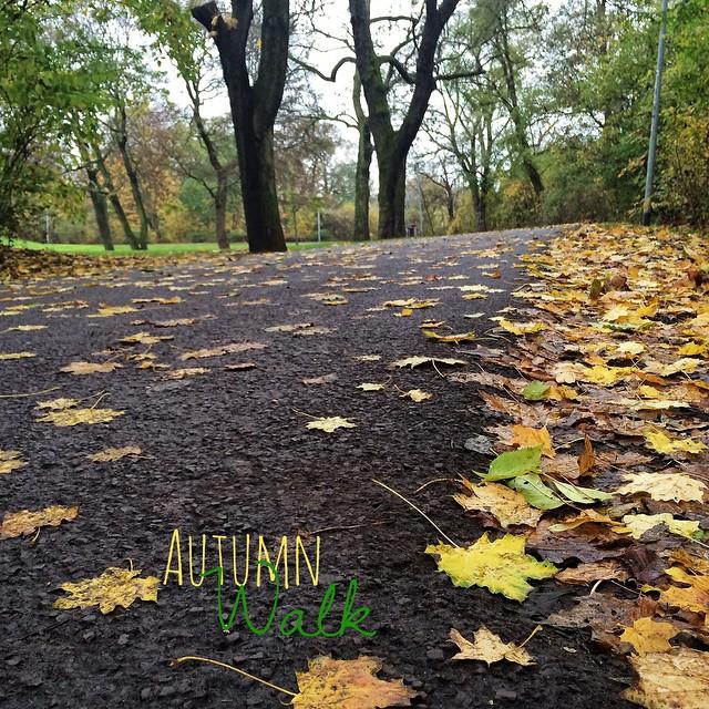 Autumn-walk. | Herbstspaziergang.