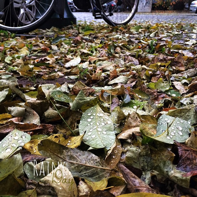 Cycle in the rain. | Radeln im Regen. Endlich Novemberwetter.