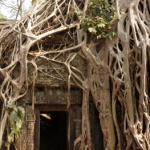 Kalendermotiv: Laos & Kambodscha 045