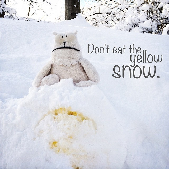 Don't eat the yellow snow!