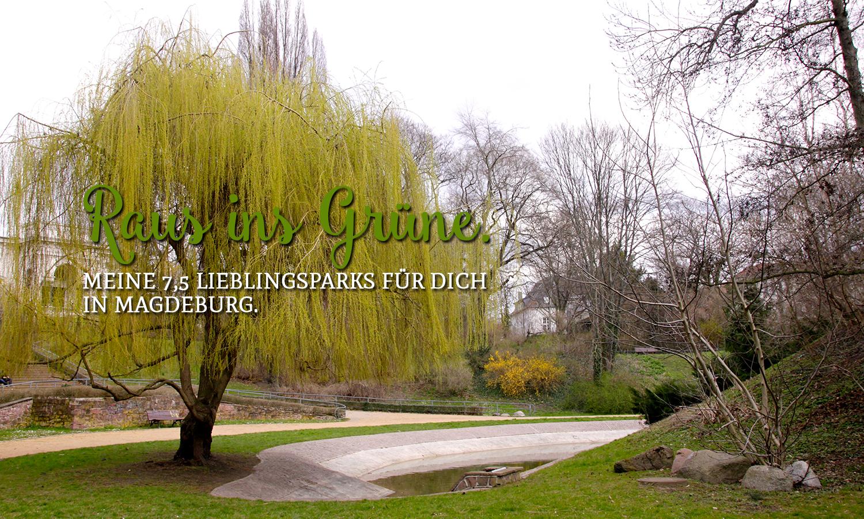 Raus ins Grüne. Meine 7,5 Lieblingsparks für dich in Magdeburg.