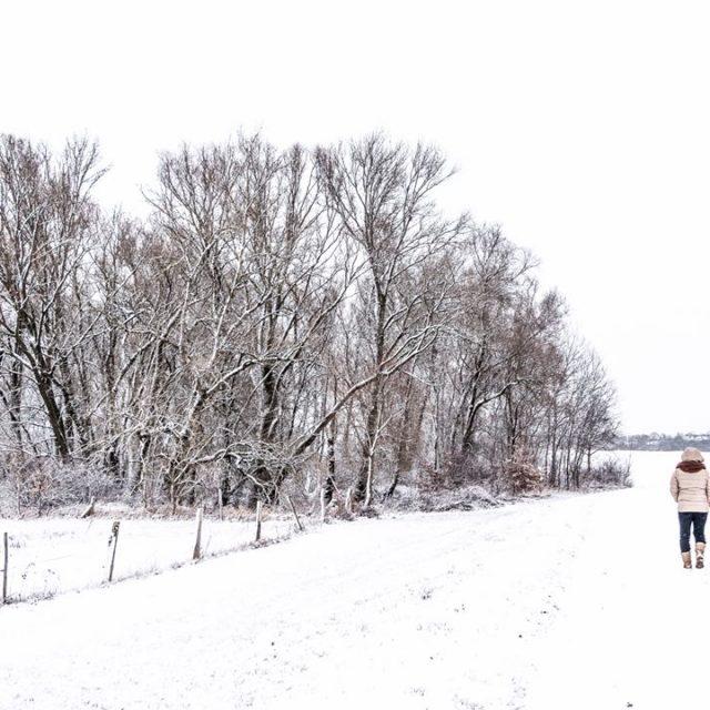 Walking in a winterwonderland Es geht doch nichts ber einenhellip