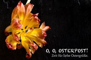 O, O, Osterpost! Zeit für liebe Ostergrüße.