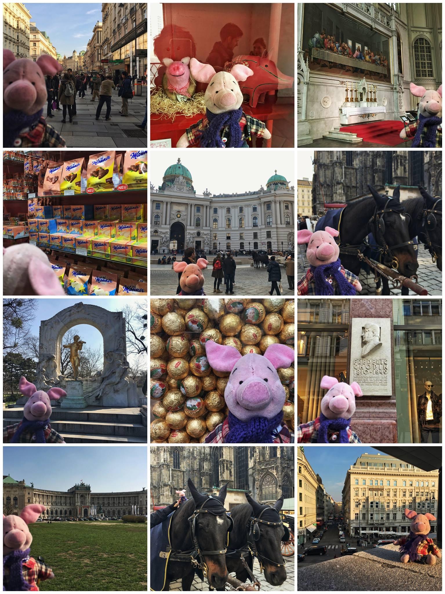 Ferkel in Vienna, Teil 1