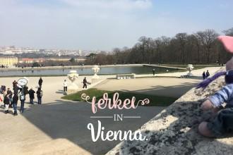 Ferkel in Vienna.
