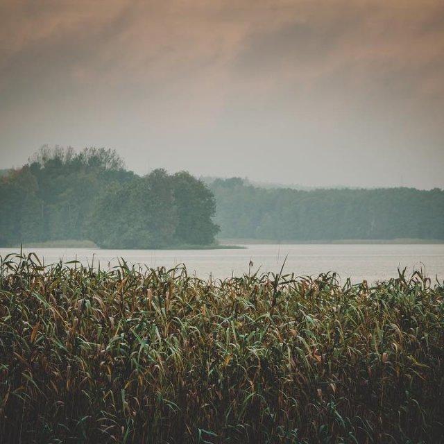 Autumn mornings    autumn herbst uckermark himmelpfort seehellip
